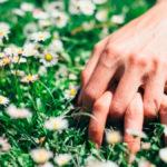Como influye la primavera en la sexualidad